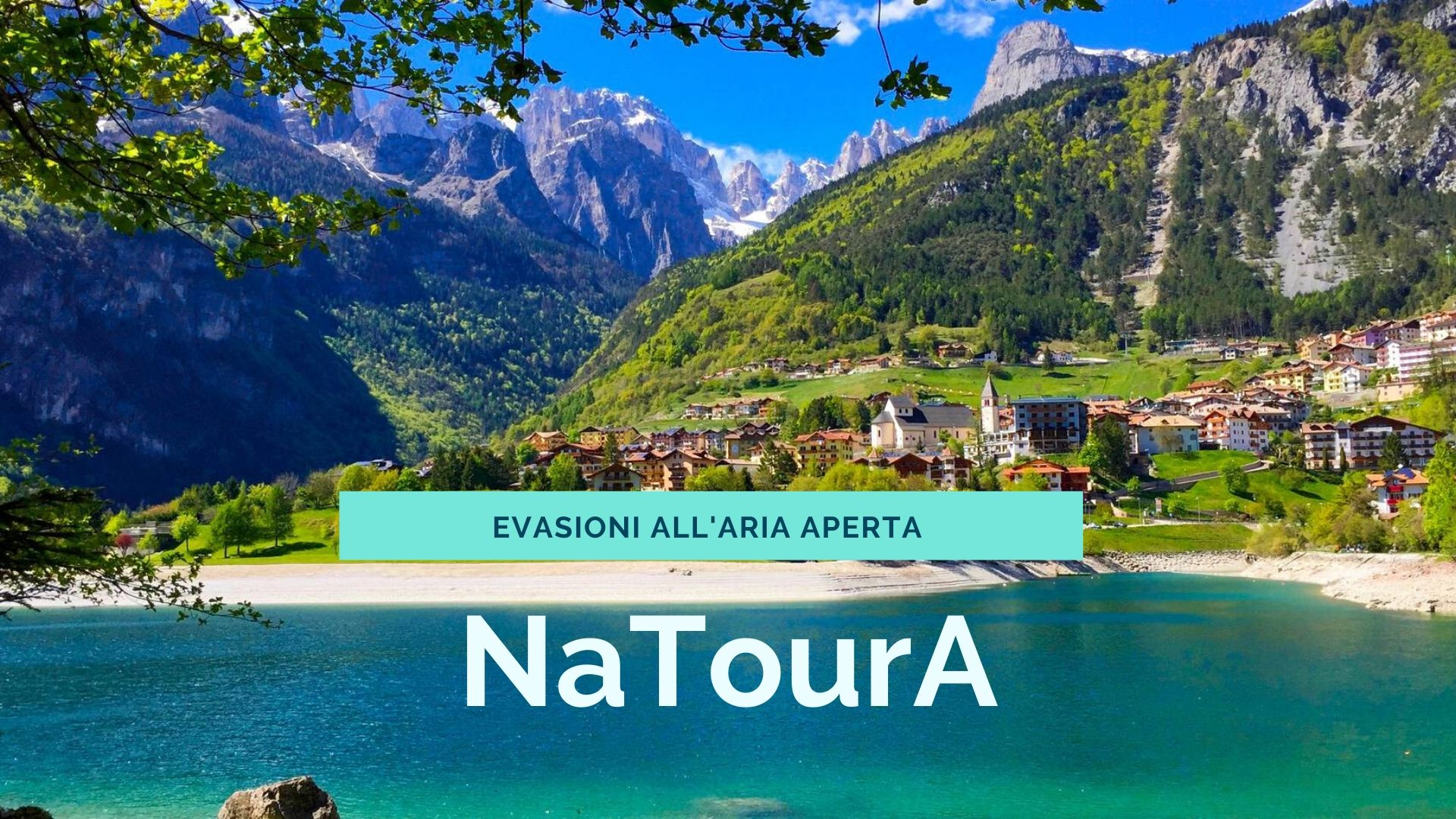 FALCINI VIAGGI - NaTourA
