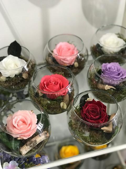 Rose stabilizzate, rose liofilizzate
