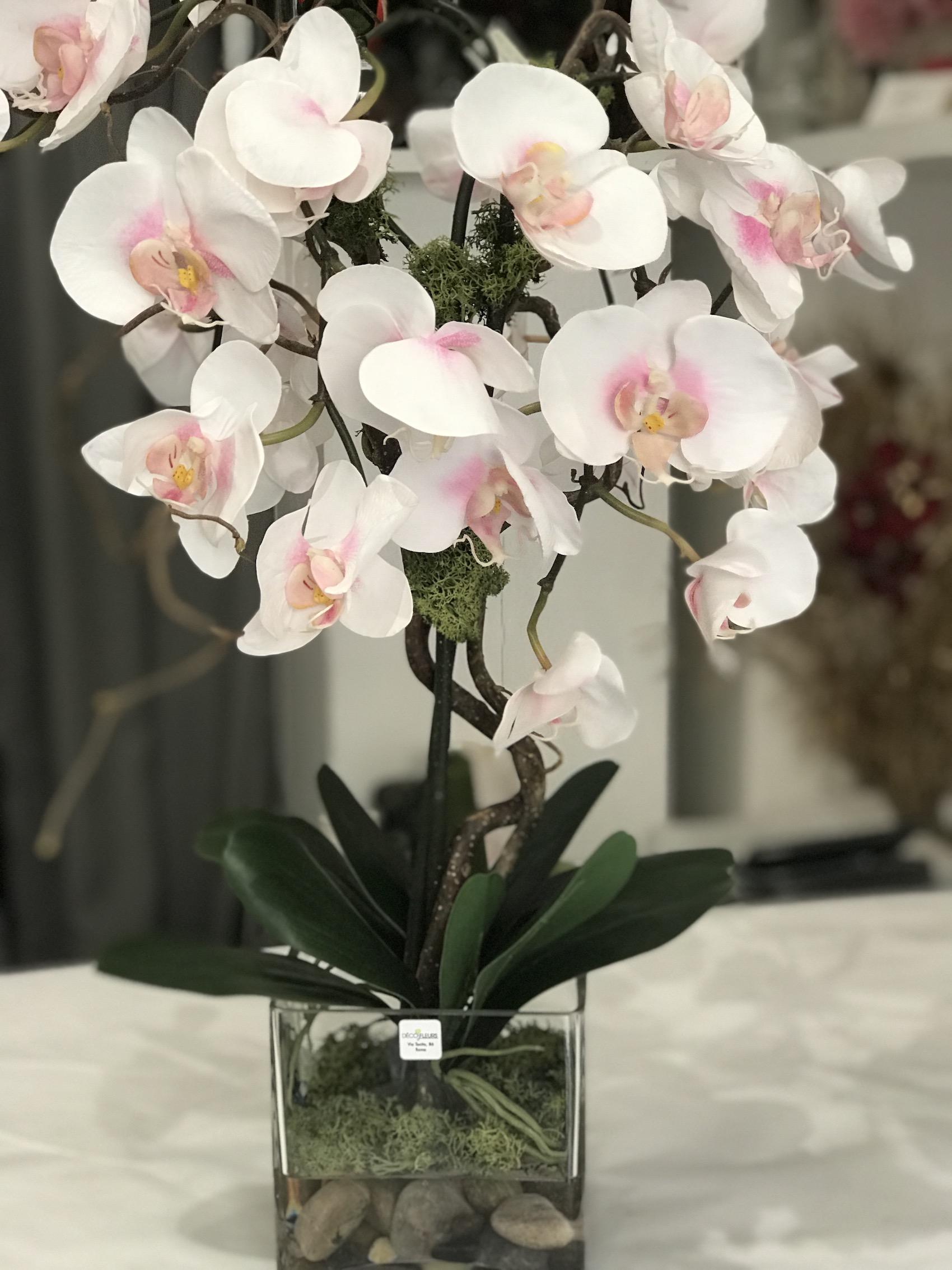Orchidea_rosa_acqua_magca_deco_fleurs