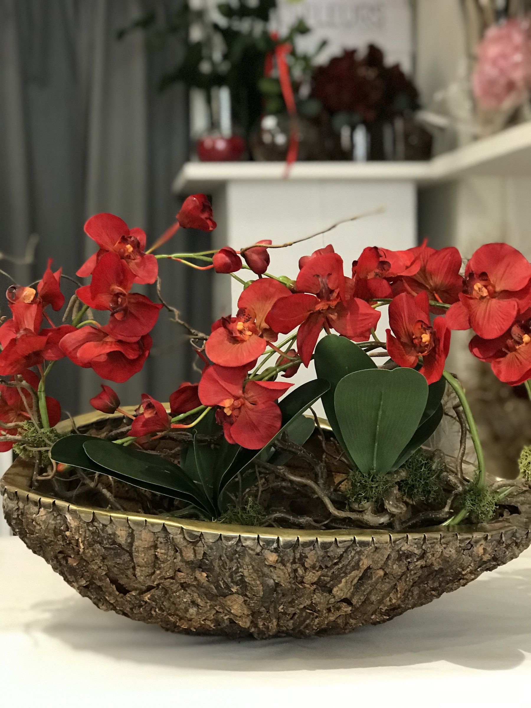 orchidea_rossa_real_deco_fleurs