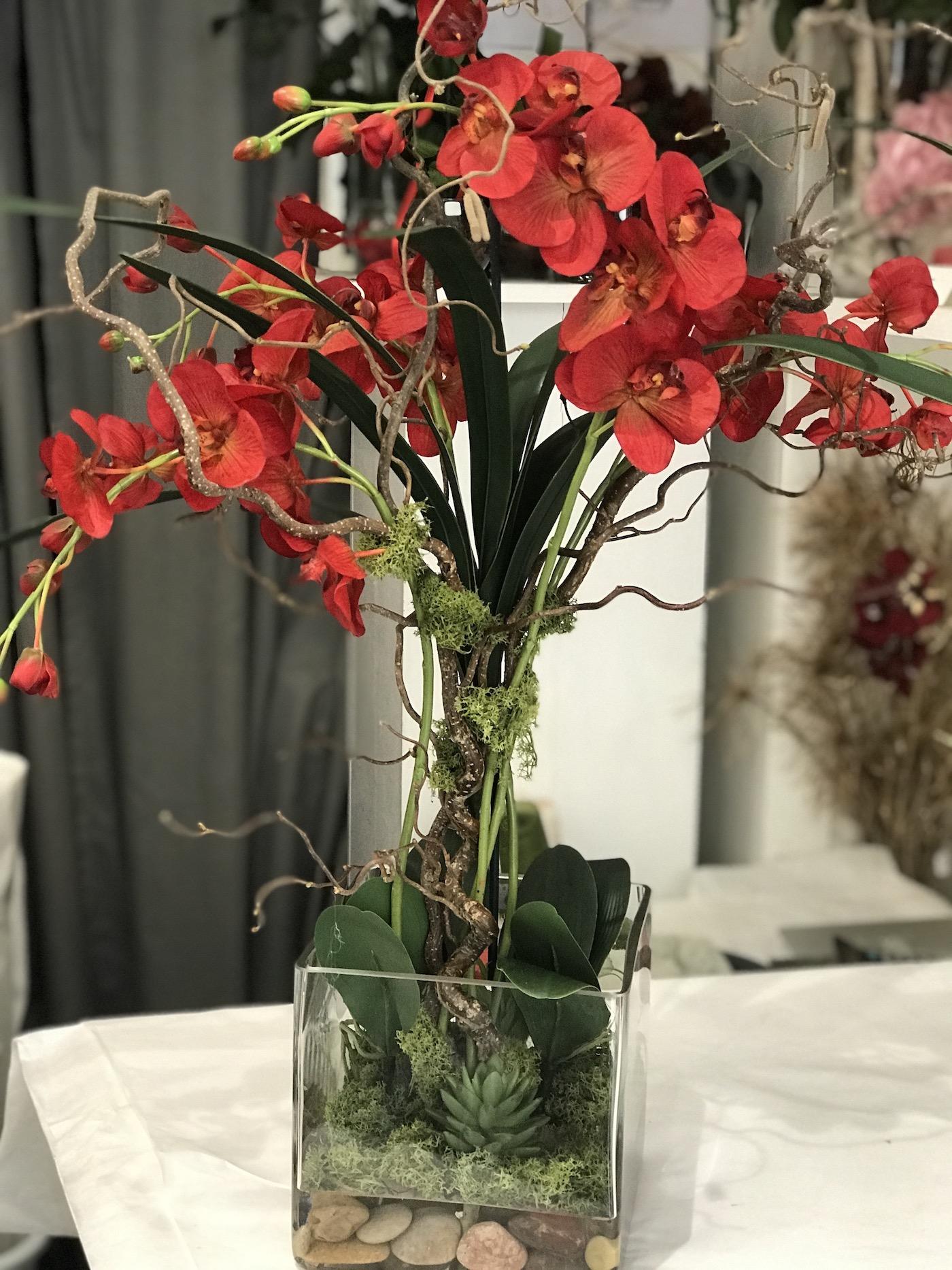 orchidea_rossa_effetto_acqua_magica