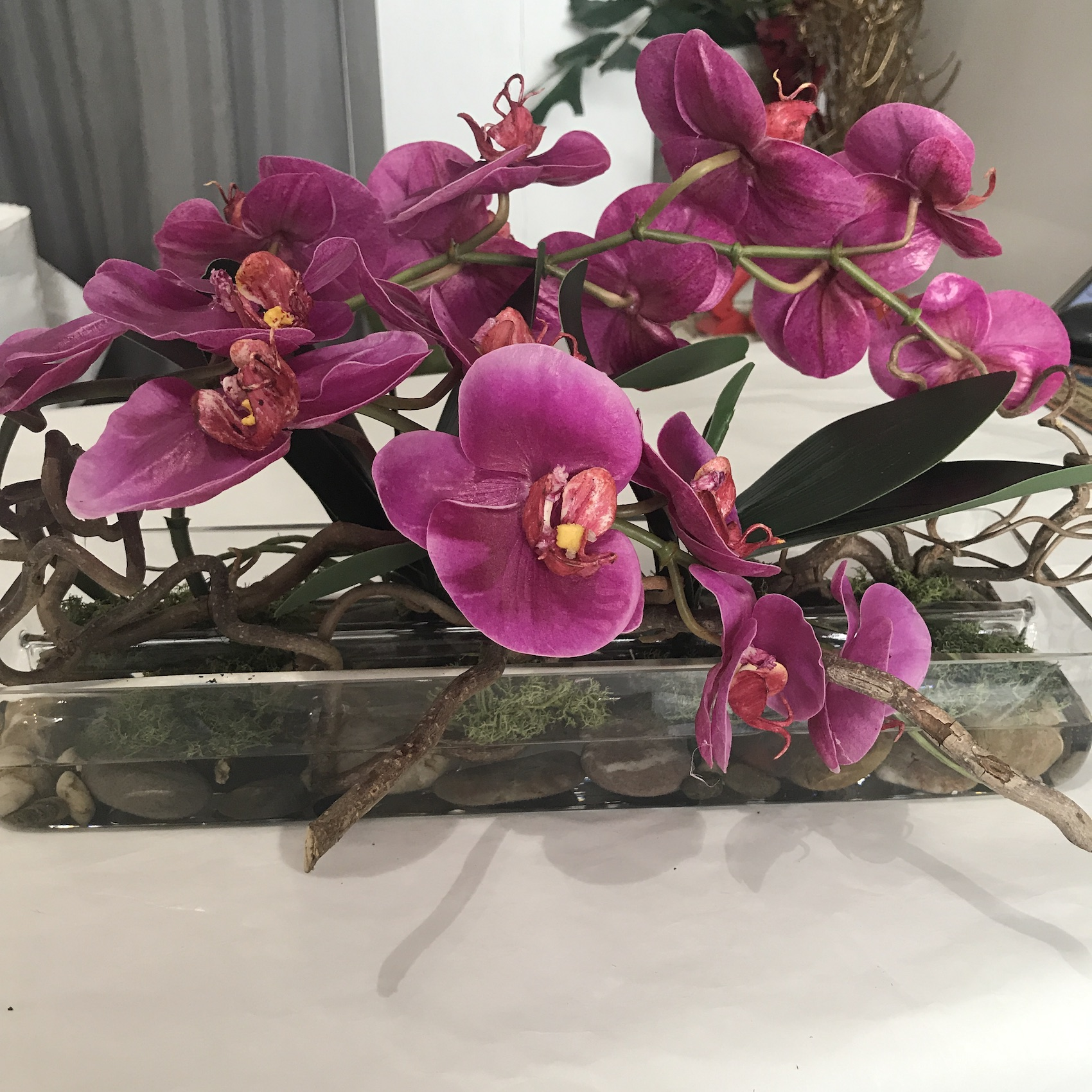 orchidea_real_touch_deco_fleurs