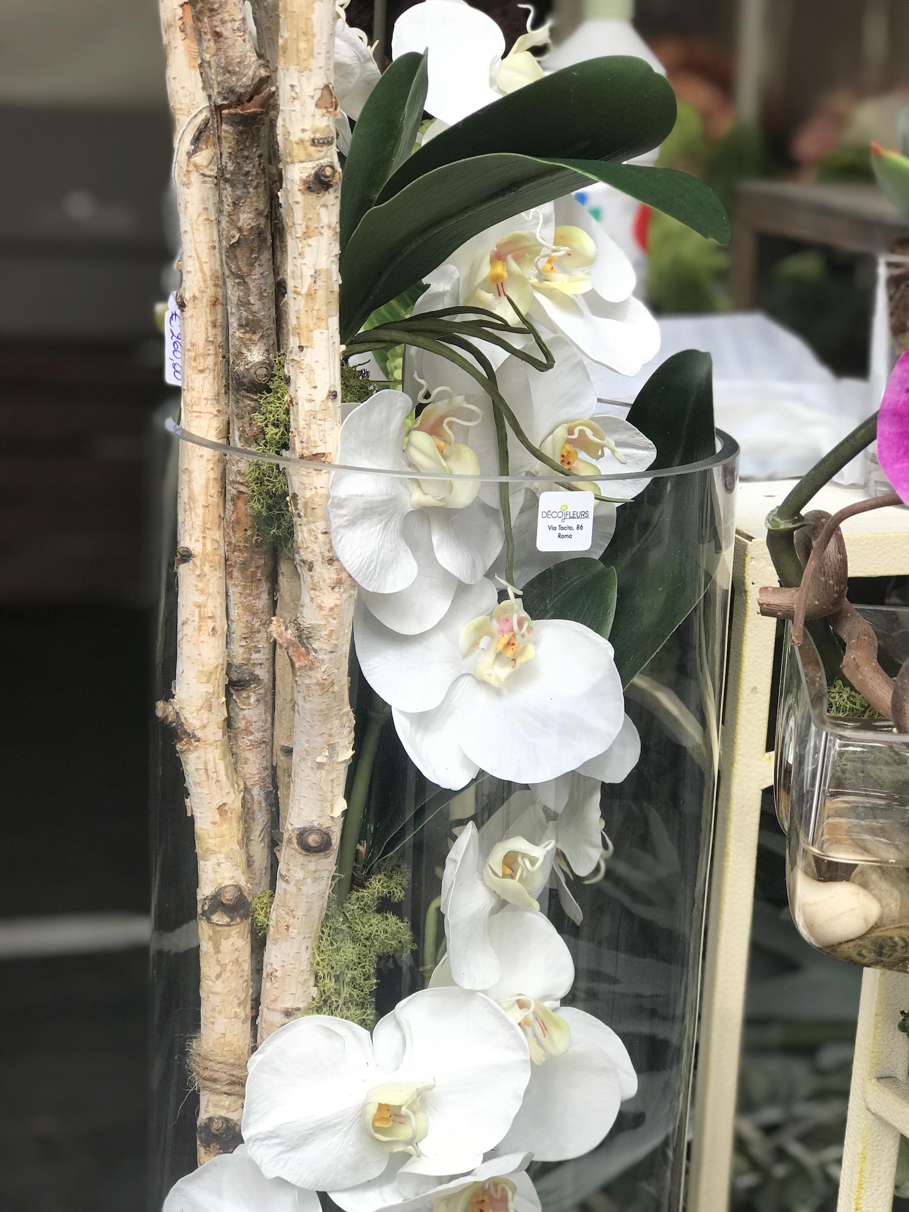Orchidea_real_cilindro_deco_fleurs