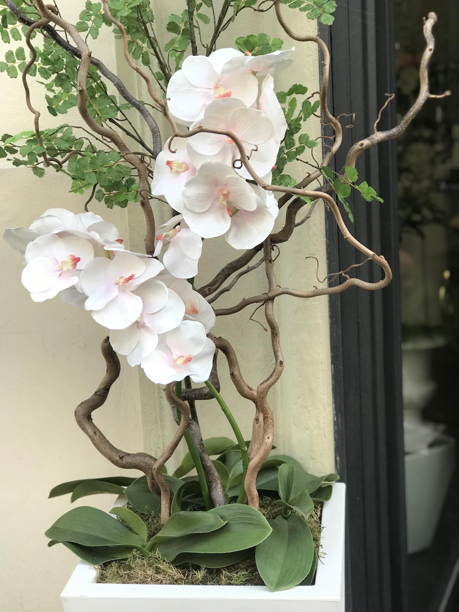 vaso orchidea finta deco fleurs roma prati