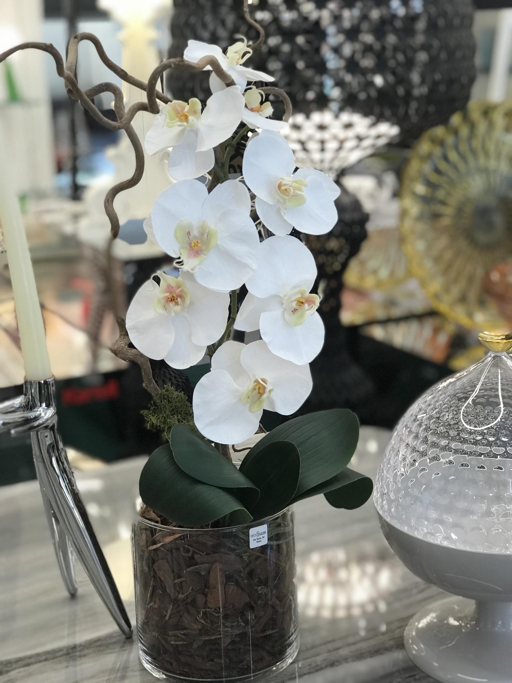 Orchidea finta artificiale trullo kartell