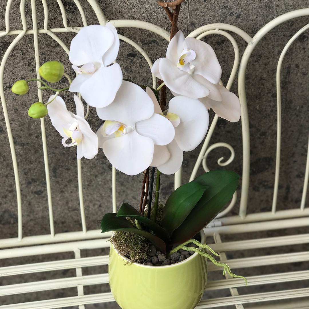 Composizioni -fiori artificiali -Magnolia -Peonie