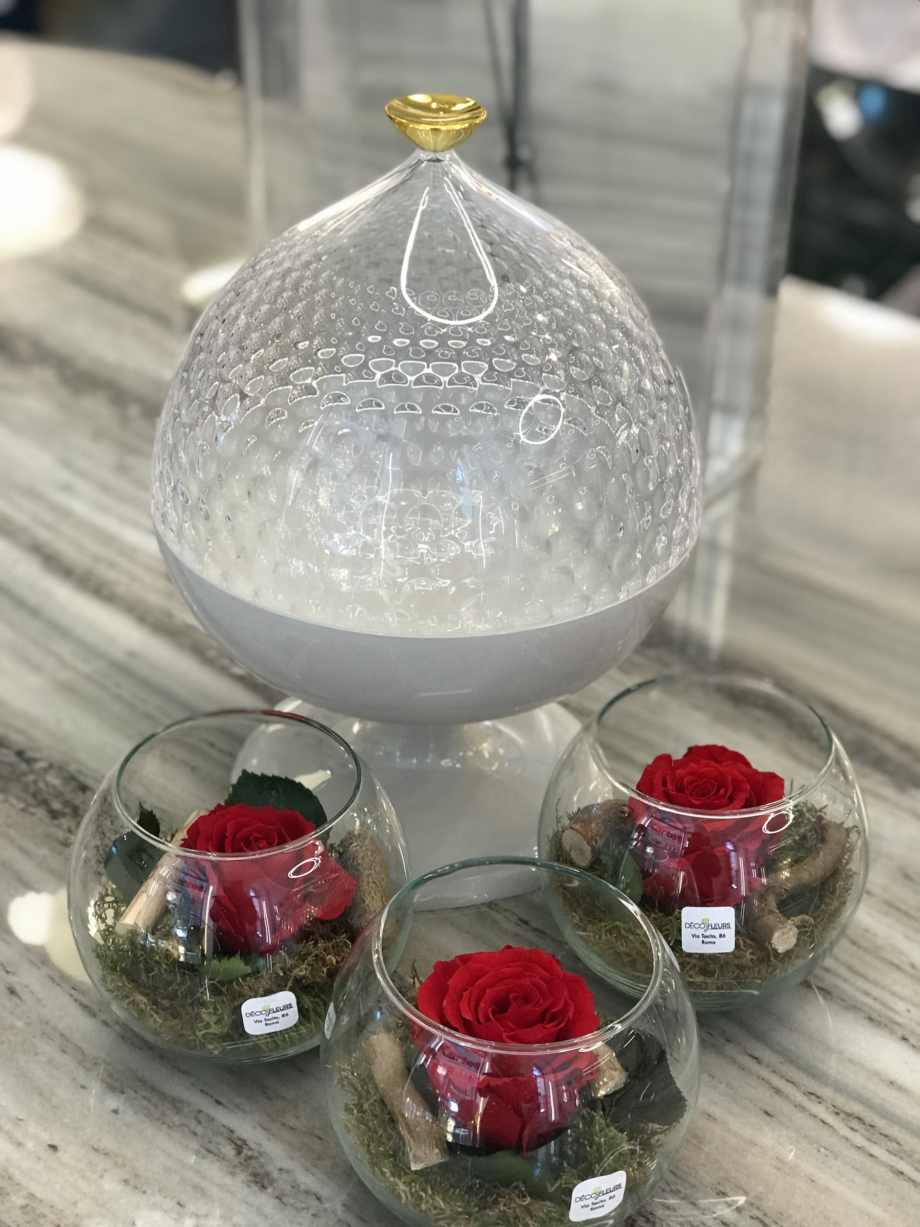 rose stabilizzate trullo kartell