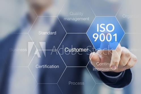 I sistemi di gestione per la qualità secondo la norma ISO 9001:2008