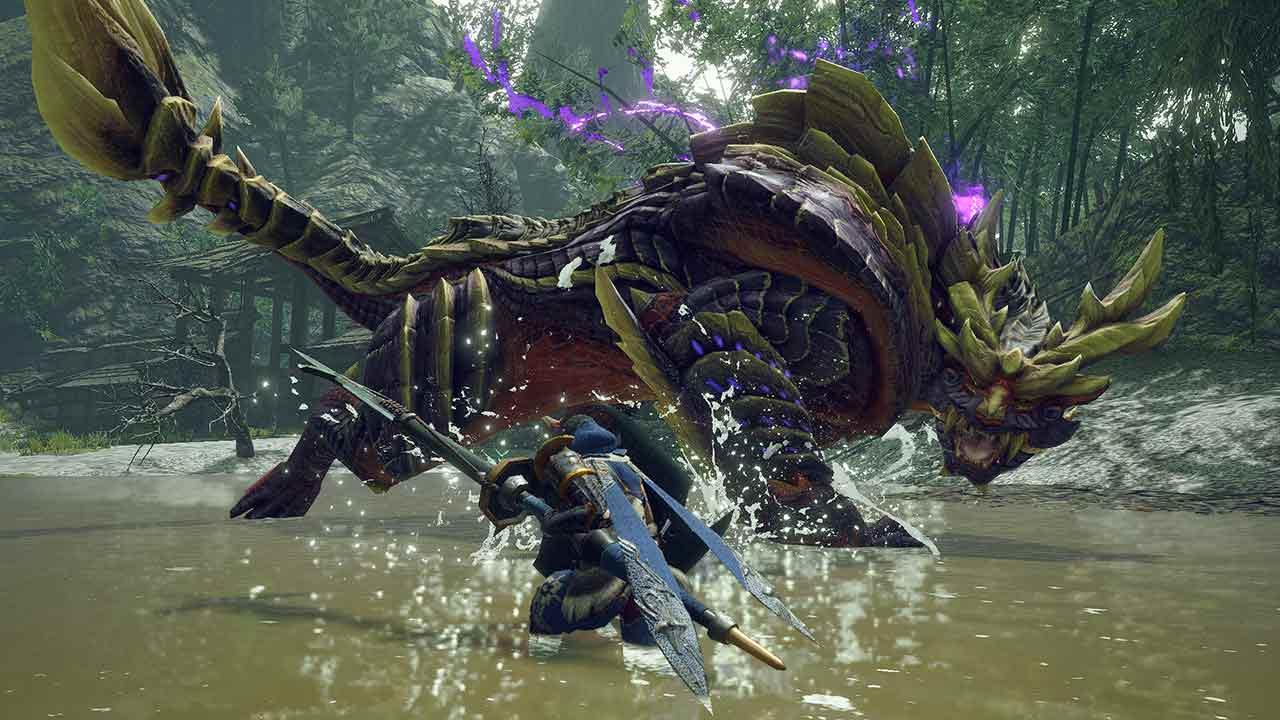 Nintendo - Monster Hunter Rise - Edizione speciale Switch e Pro Controller