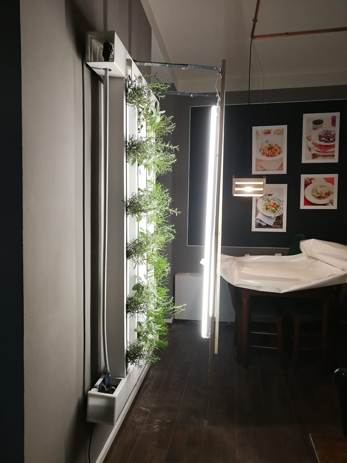 Luci Led e ZipGrow TM 4 Tower Farm Wall 5'