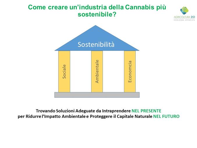 Come costruire un'industria della Cannabis più sostenibile