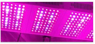 Diodi di emissione luminosa LED