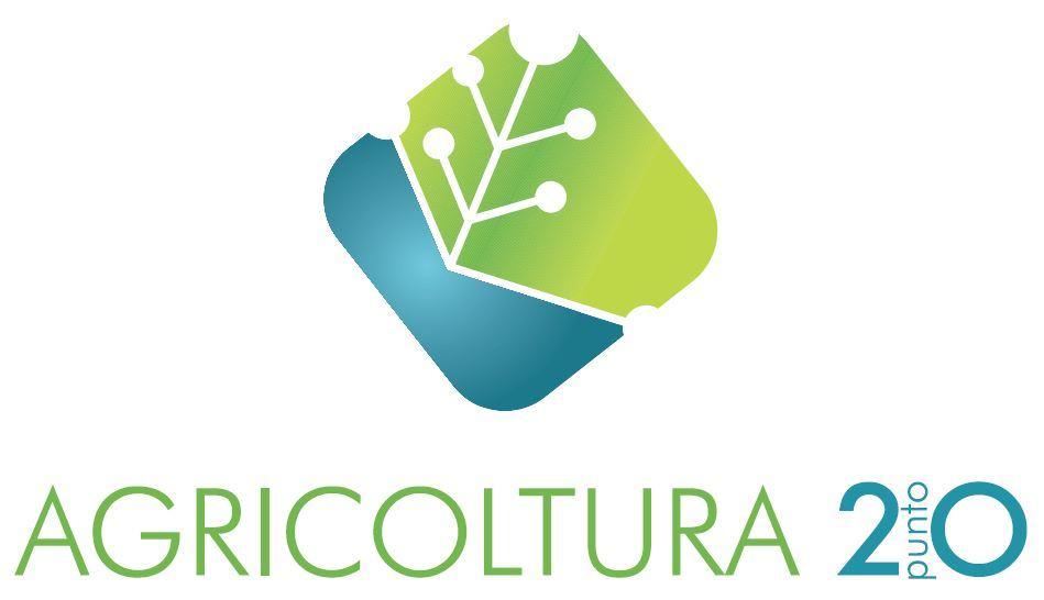 business plan coltivazione idroponica
