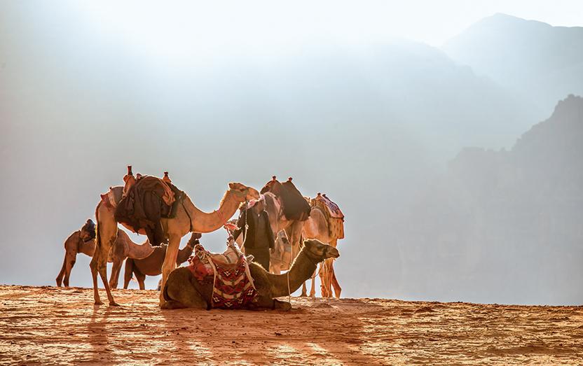 Luna di miele nell'Oman