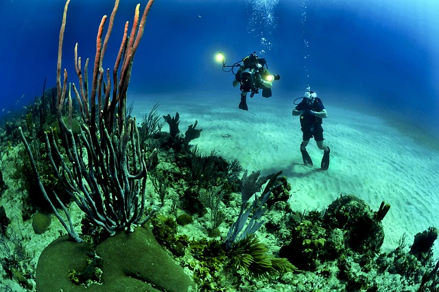 Maniaci dei Viaggi - Diving
