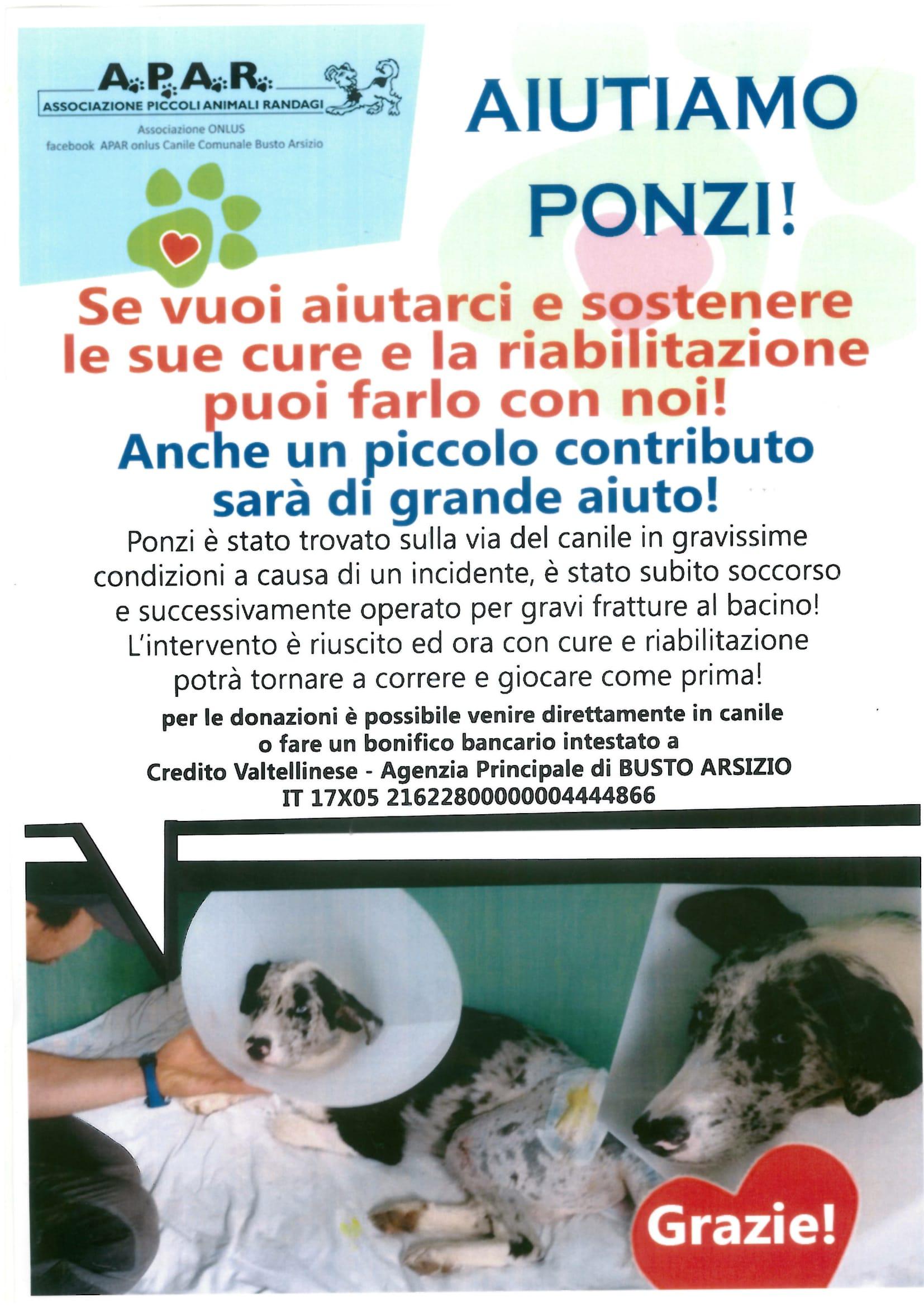 Aiutiamo Ponzi